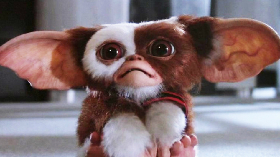 Apparently the Next 'Gremlins' Film Is a Reboot After All