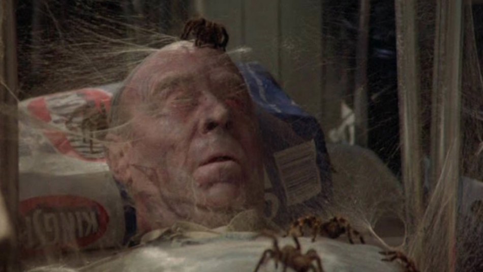 An 'Arachnophobia' Remake Is Coming from James Wan
